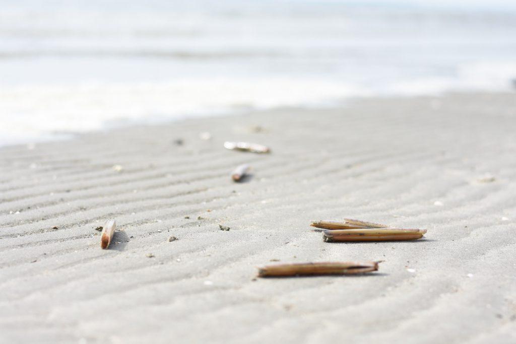 scheermessen strand 1